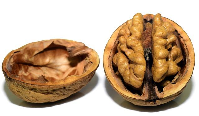 Масло грецкого ореха – полезные свойства и противопоказания, применение. Ореховое масло для ресниц, волос, ногтей, лица