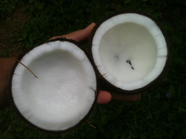 Половинки кокоса